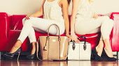 Fashionable Girls With Bags Handbags On Red Couch poster