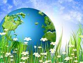Постер, плакат: Дикие Весенние цветы зеленый луг и Зеленый мир