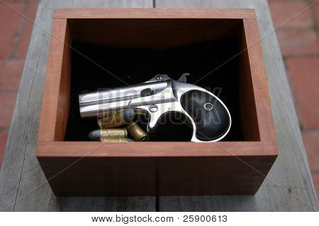 Circa 1889, Model 95, Type II Model 3 Double Derringer in its wooden display box on black velvet and shells