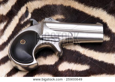 """Circa 1889, Model 95, Type II Model 3 Double Derringer"" lays ontop of Real Zebra Fur"