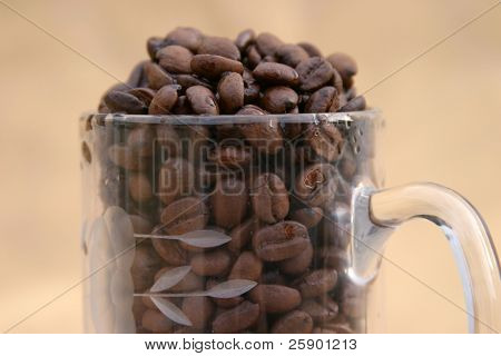 Glass coffee mug filled with close up of unground coffee beans on a gold background