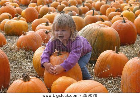 Harvest 7009