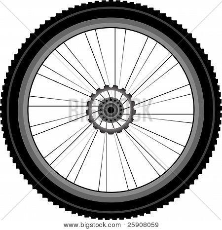 bike wheel isolated on white