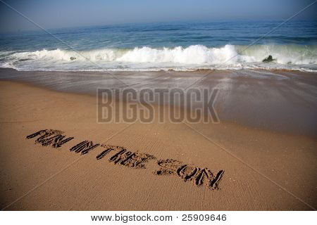"Message says ""fun in the sun""  in the Sand on a Beach with waves and blue ocean concepts"