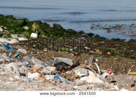 Dirty Beach