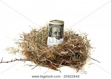 Financial Nest Egg concept $100.00 (one hundred dollar bills) inside a bird egg inside a bird nest