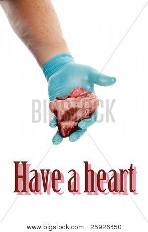 an unidentifiable surgeon holds a heart in his hands.  isolated on white with room for your text great for Valentines Day, Medical and other uses