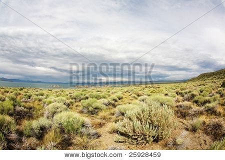 a wide angle view through a fisheye lens of somewhere on the california nevada desert boarder during a hot summer day