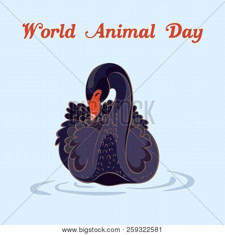 World Animal Day Black Swan