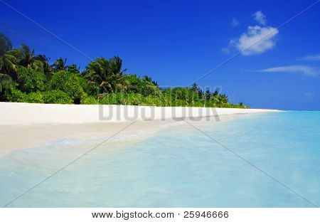 Tropical paradise in Maldives with white beach and turquoise sea