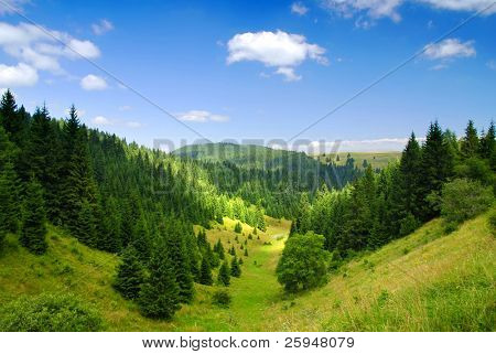 Tatras Mountains covered by green pine forests, Slovakia