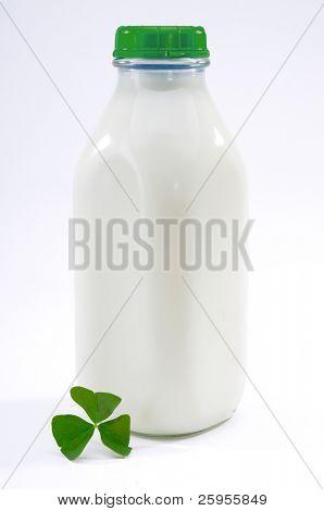 Retro Style Old Milk Bottle Full Of Fresh Organic Milk And a Shamrock Leaf