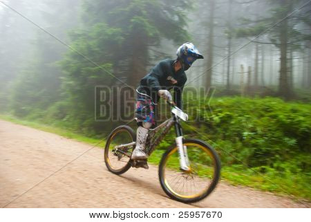 Mountain bike race in a forest, shot with low shutter speed to achieve motion blur