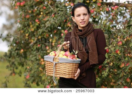 Girl holds picnic basket with apples - gifts of autumn