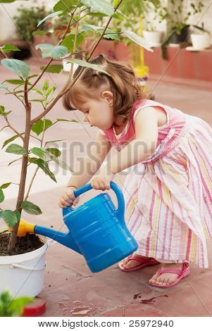 Little Gardener Outdoors