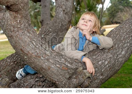 The dreaming little boy on a Tree.