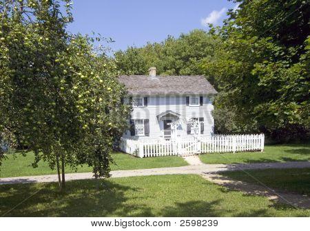 Pequena casa e árvore de maçã