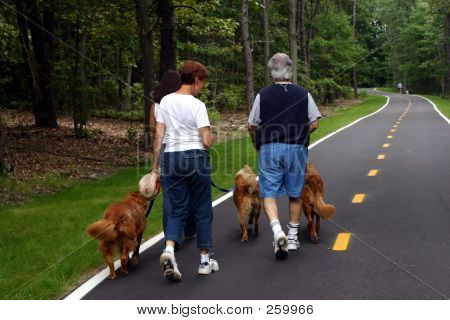 Family Walking Dogs 002