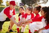 Girl baseball team kneeling with their coach, touching hands poster