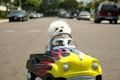 a Bichon Frise Dog in her Pedal Car