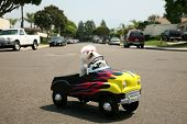 stock photo of blood drive  - a bichon frise dog drives her hot rod pedal car around town - JPG