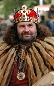 Bearded man in fancy dress of a king during an annual young wine festival in Prague, Czech Republic.