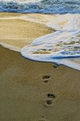 Beach travel - woman relaxing walking on sand beach leaving footprints in the sand. Closeup detail o poster