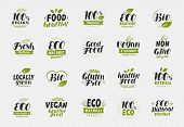 Set Of Eco Food Friendly And Organic Labels. Vegan, Ecology Icons. Vector poster