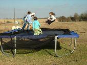 Kids On A Tramboline