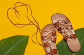 Brown Greek Leather Summer Sandals And Tropical Leaves On Bright Yellow Minimalistic Background. Wom poster