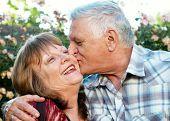 pic of elderly couple  - Kissing happy elderly couple in love outdoor - JPG
