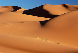 picture of barchan  - Sand dunes of Erg Chebbi in the Sahara Desert - JPG