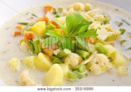 Substantial Vegetable Soup