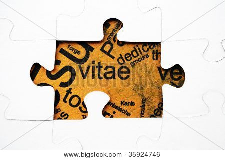 Cv Puzzle Concept