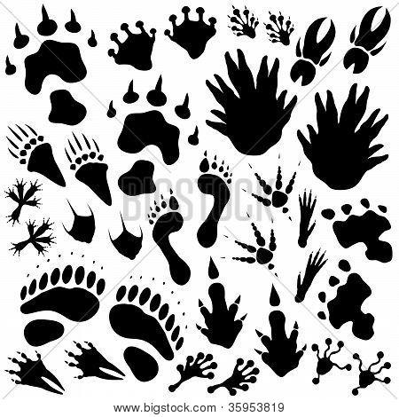 Alien Monster Footprints