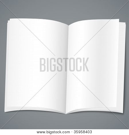 Plantilla de diseño del folleto vacío