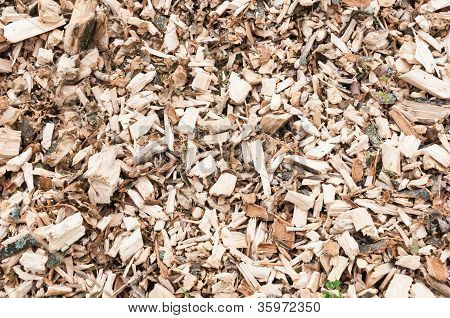 Closeup Of A Pile With Woodchips