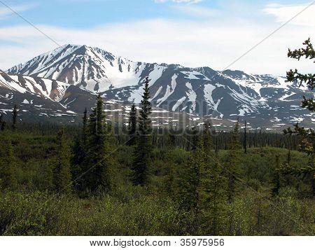 Denali Highway - Alaska