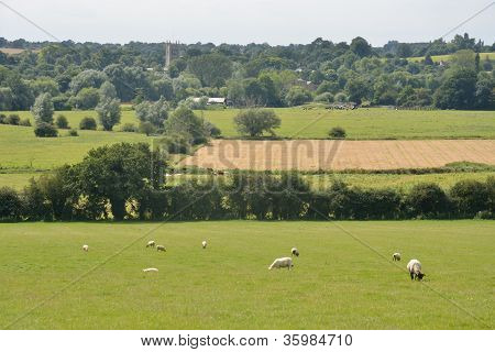 Landscape of suffolk