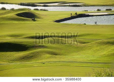 Lugar de golfe com verde maravilhoso