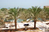 Постер, плакат: Зона отдыха в роскошный отель с Дата Пальмы Рас Аль Хайма ОАЭ
