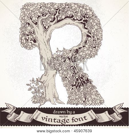 Fable forest hand drawn by a vintage font - R