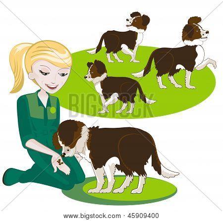 Girl Feeding A Dog Dry Food