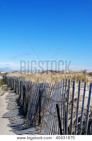 Fenced In the Beach