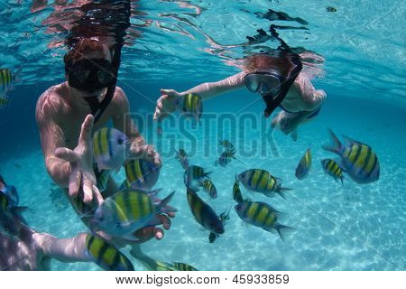 Young friends having fun in a tropical sea. Underwater scene with fish