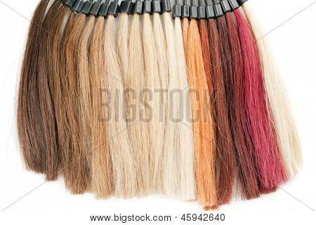 palette of hairs isolated on white background