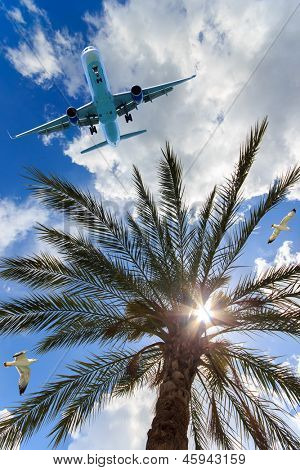 Airplane and seagulls over blue sky and clouds
