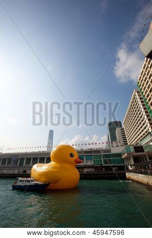 HONG KONG - MAY 15: Duck with skyline in Hong Kong on May 15 2013. Giant 'Rubber Duck' Sculpture By Florentijn Hofman, visit Hong Kong today which draw the attention of hong kong people