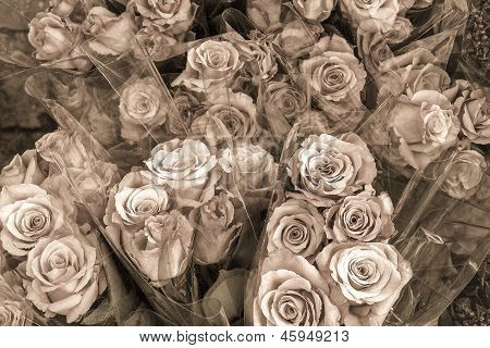 Several bunches of roses for sale