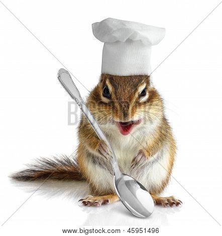 Funny Chipmunk Cook